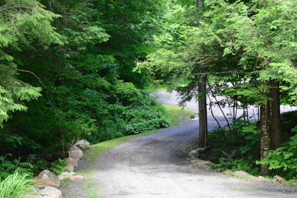 View looking down driveway
