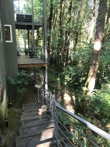 Steps to lower viewing deck