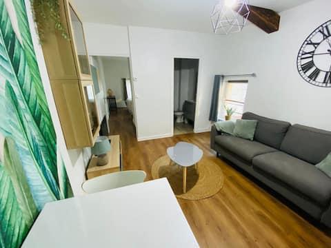 """Appartement chaleureux """"Le Petit Nicolas"""""""