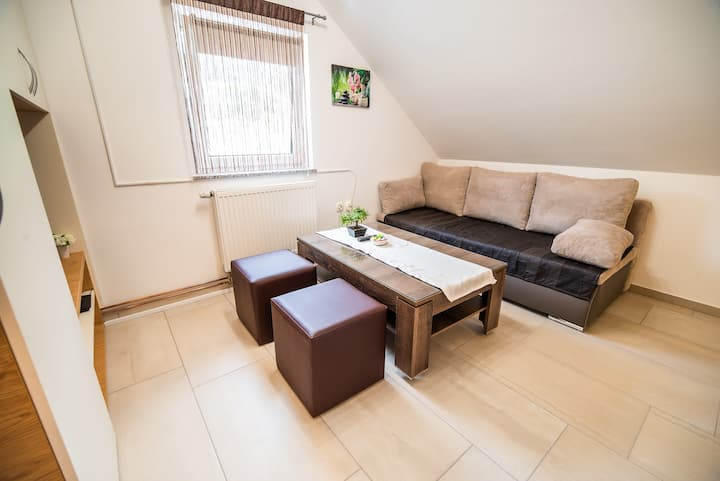 One bedroom apartment in Želimlje