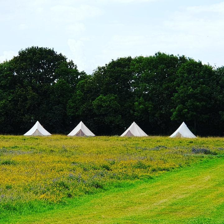 Fun Glamping site. Near Tenterden. Bell tents.