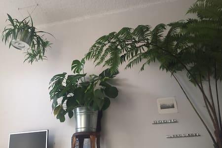 Sunny n Green Private Room in Red Hook, Brooklyn - Brooklyn - Lejlighed