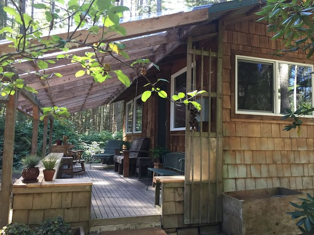 Sweet Cabin in the Woods near Langley