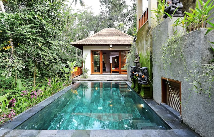 1BR VILLA~POOL~RICE FIELDS ~JUNGLE - Ubud