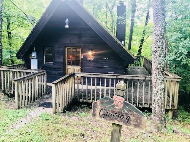 Backwoods Gatlinburg tiny hot tub cabin-fireplace