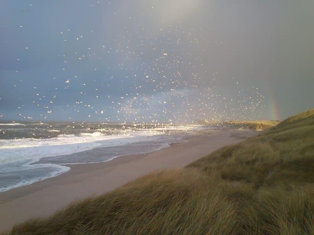 Landsted ved strand og vesterhav - Lemvig - Huis