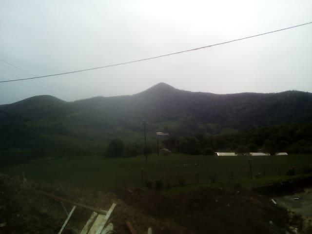 Appartement en RDC  près de de la ferme familiale