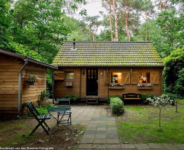 The Gingerbread Huis, nestled in private woods - Lieren - Ev