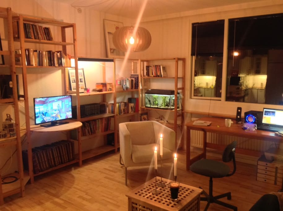 livingroom-area: relax with international tv, books, internet and more