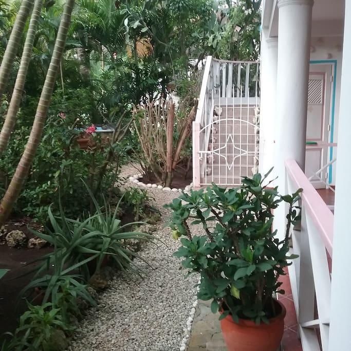 Jardin y pasillo de entrada al Apartamento
