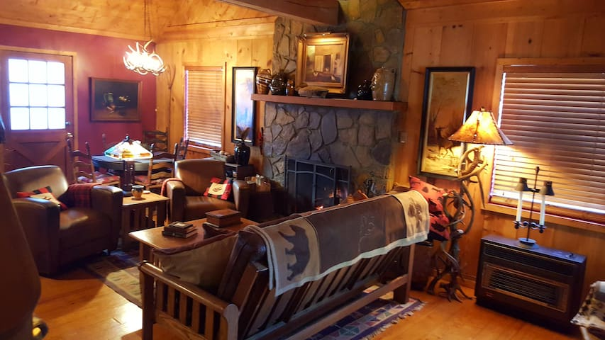 Rushing Creek Cozy Cabin - Hiawassee - Srub