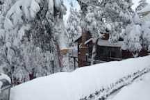 Winter wonderland - studio is downstairs with complete privacy and separate entry.
