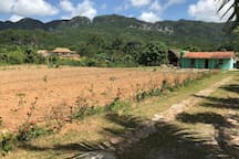 Front of the Finca