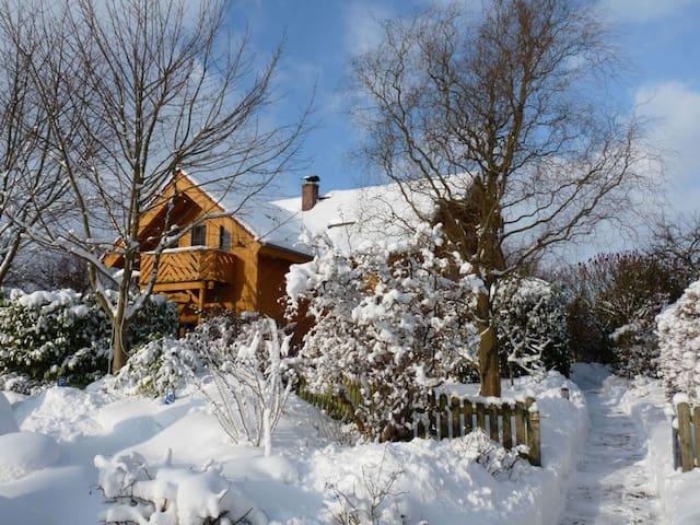 Das Holzhaus im Winter