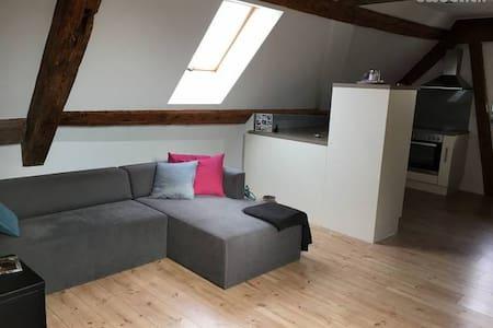 2.5 Zi Dachwohnung im Zentrum von Balsthal - Balsthal - อพาร์ทเมนท์