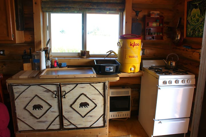 Kitchen sink, cabinet and propane heater