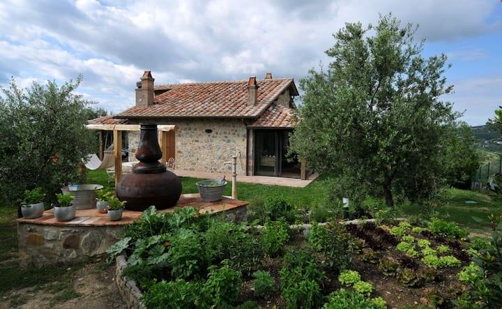 Villa Cerchiaia - Villa Cerchi