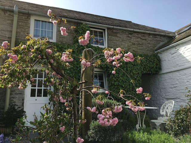 The White Hart Apartments - Padstow Old Town