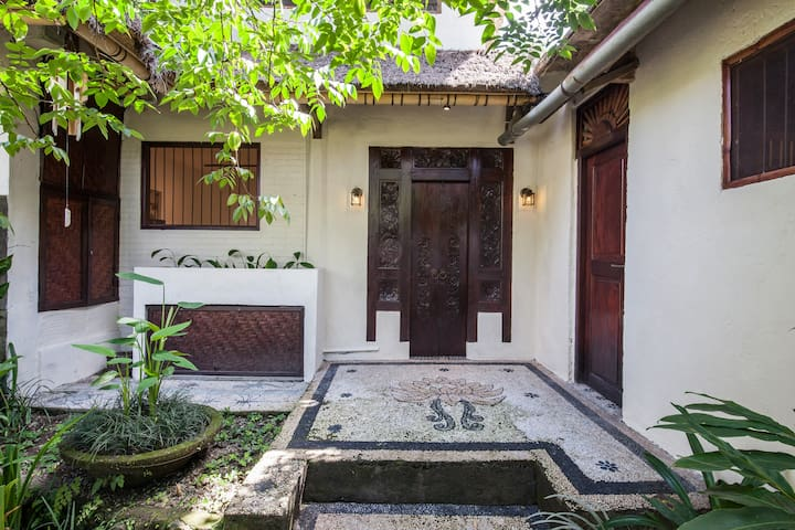 Entrance doors into the house