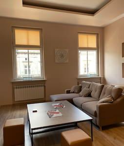 Mieszkanie w centrum Gniezna