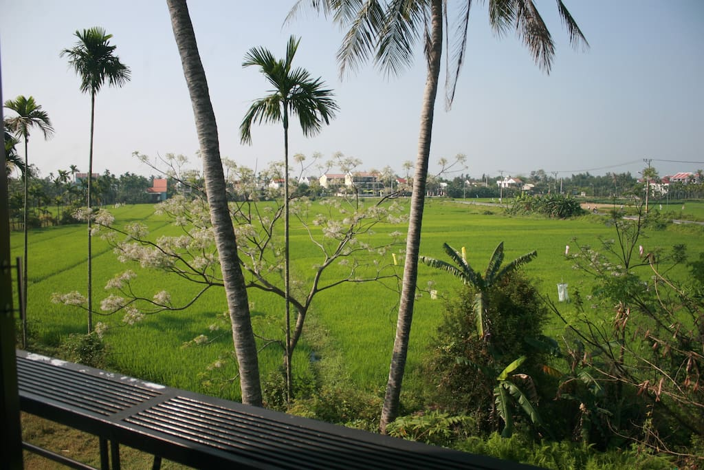 Private room- rice paddy view-25m2