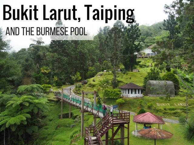 Bukit Larut Taiping