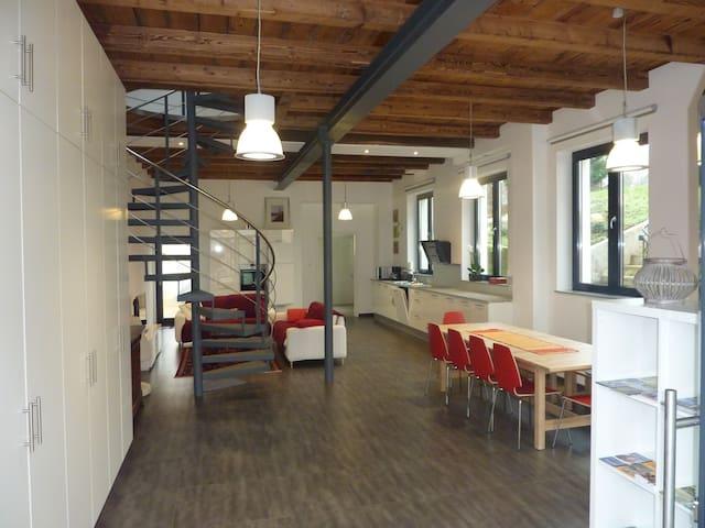 Ancien atelier aménagé - Wissembourg - House