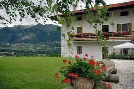 """""""La Vigna"""" Apartment - Frazione Vigo Lomaso n.81"""