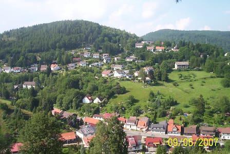 Ferienwohnung mit Garten im Harz - Wieda