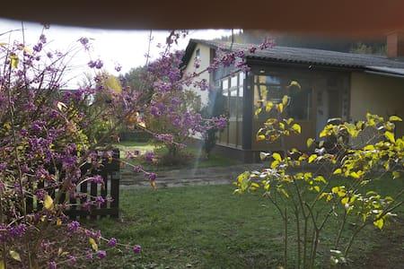 Great house with garden near lake.  - Unterburg am Klopeiner See