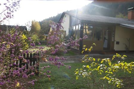 Mooi vrijstaand huis met grote tuin - Unterburg am Klopeiner See