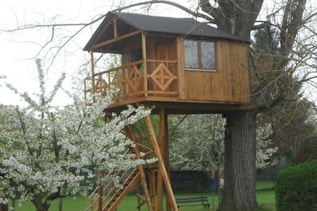 Cabane dans un arbre Gite insolite - Dossenheim-sur-Zinsel