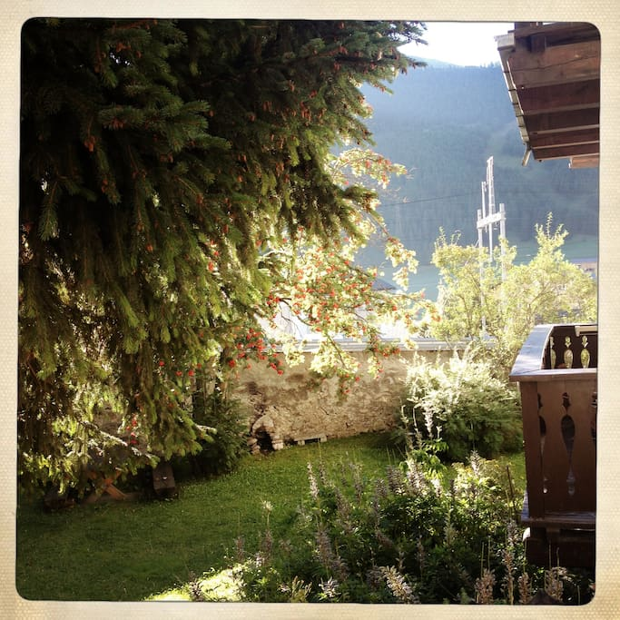Blick in den gerne zu nutzenden Garten - mit Grillstelle.