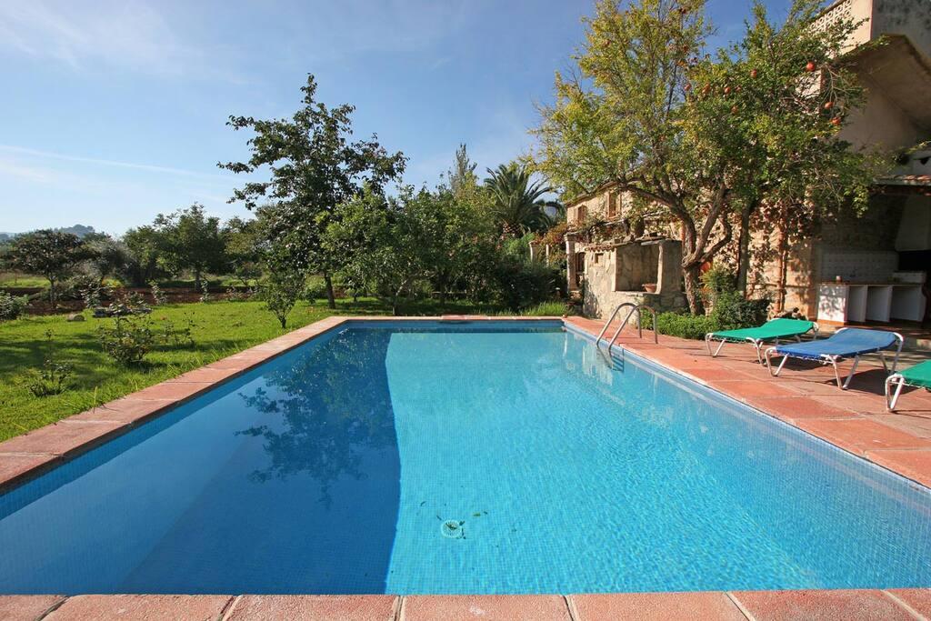 Pool towards the garden