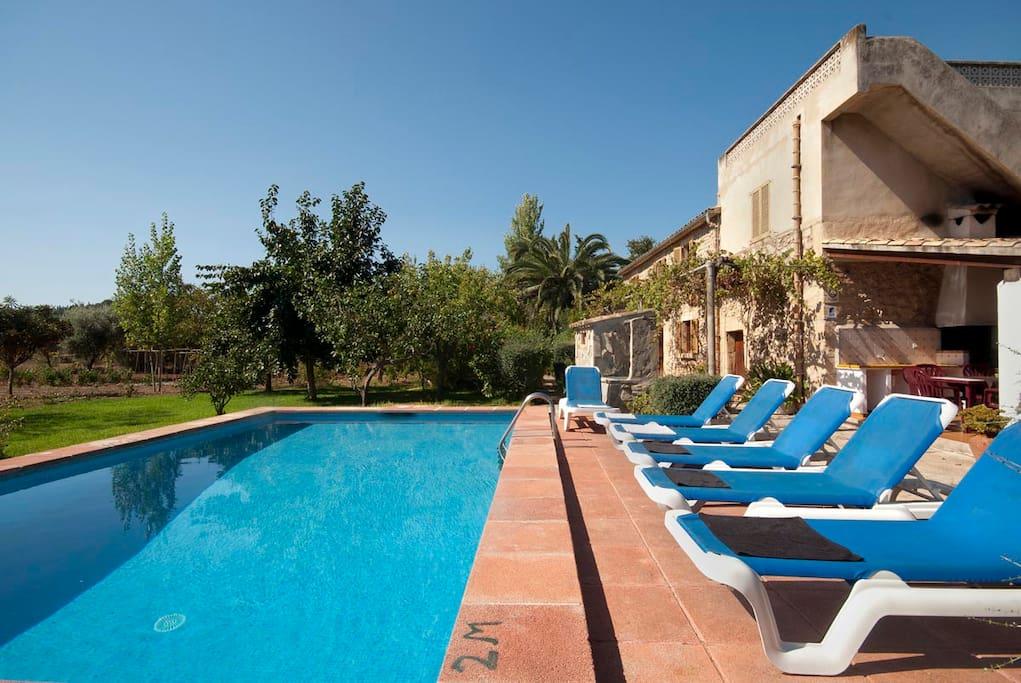 Sunbathing terrace by the pool