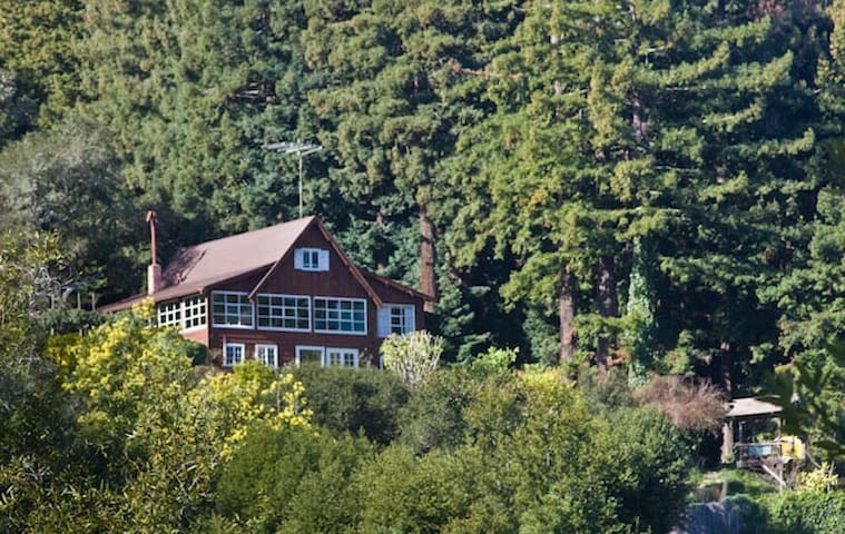 Suki's Mountain Retreat - Mill Valley - Byt