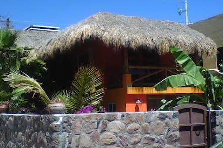 Charming Tiki House in San Carlos!! - San Carlos