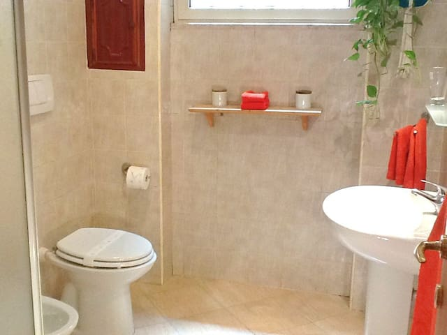 A bathroom with shower, basin, bidet and large mirror.
