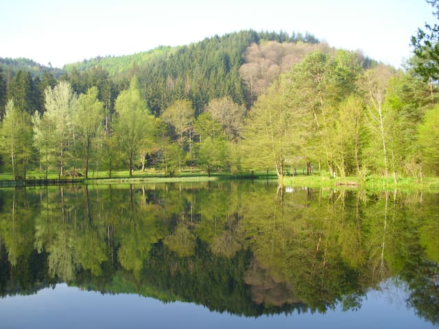 MR Ferienwohnung 120qm + Sonnenterrasse 40qm - Lambrecht (Pfalz) - Departamento