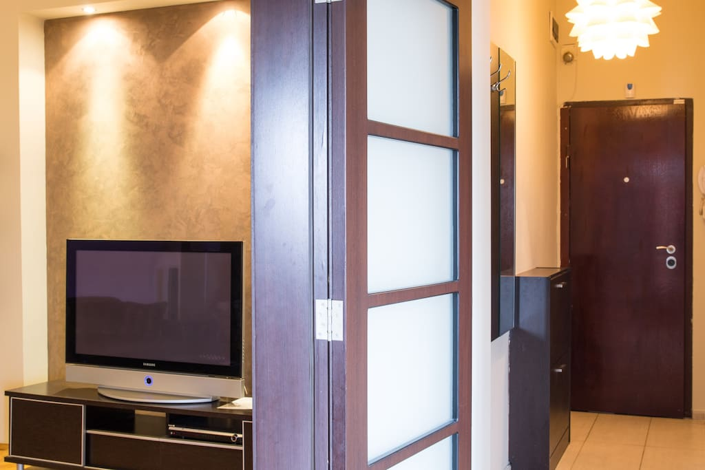 You see the entrance door of the apartment and the TV in the living room.