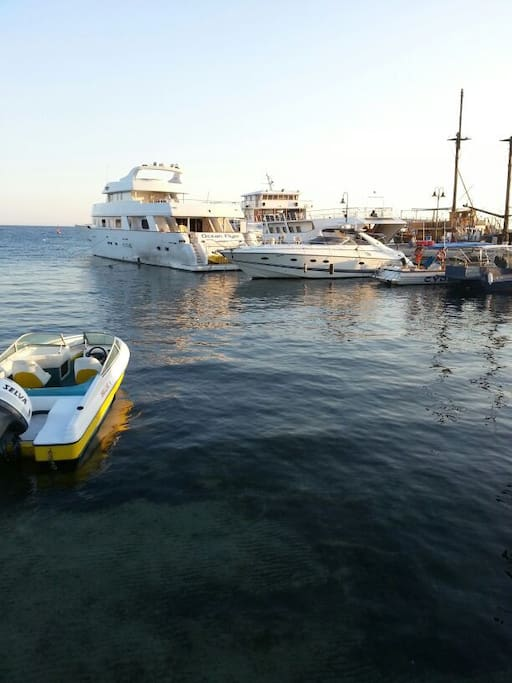 Nearby Paphos harbour