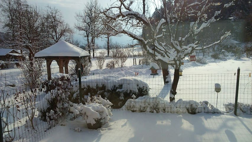 Cosy place surrounded by nature - Plesivica