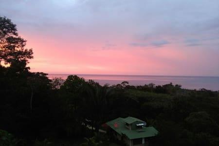 Iguana Surf House - Bahía Drake - Casa