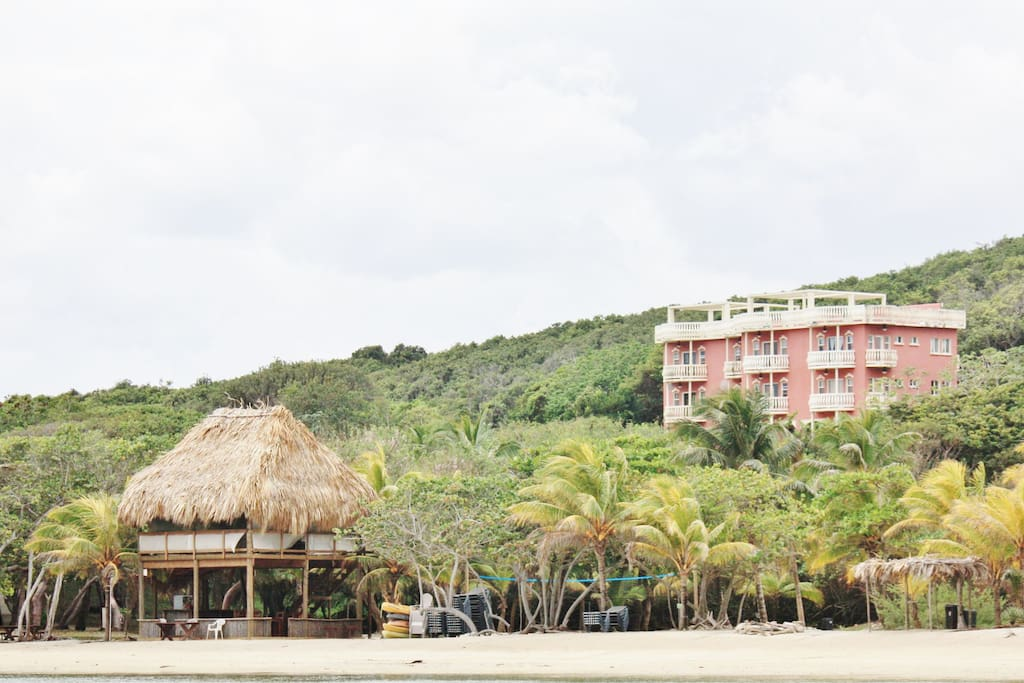 View of palapa, condo building and resort from the beach.