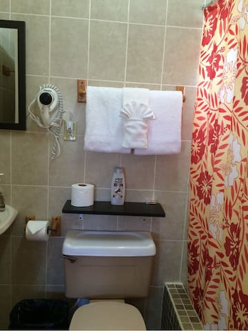 3 Bedroom Spacious Vacation Rental - Belize City - Rumah