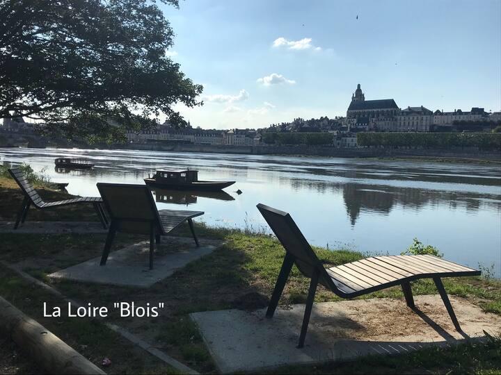 Blois: Studio au bord la Loire