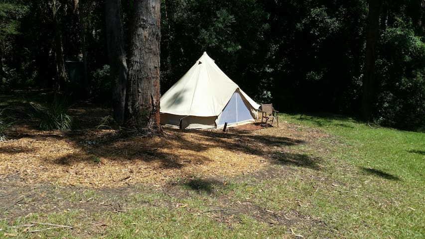 Glamping at Avoca Beach - Gwana. - Avoca Beach - Stan