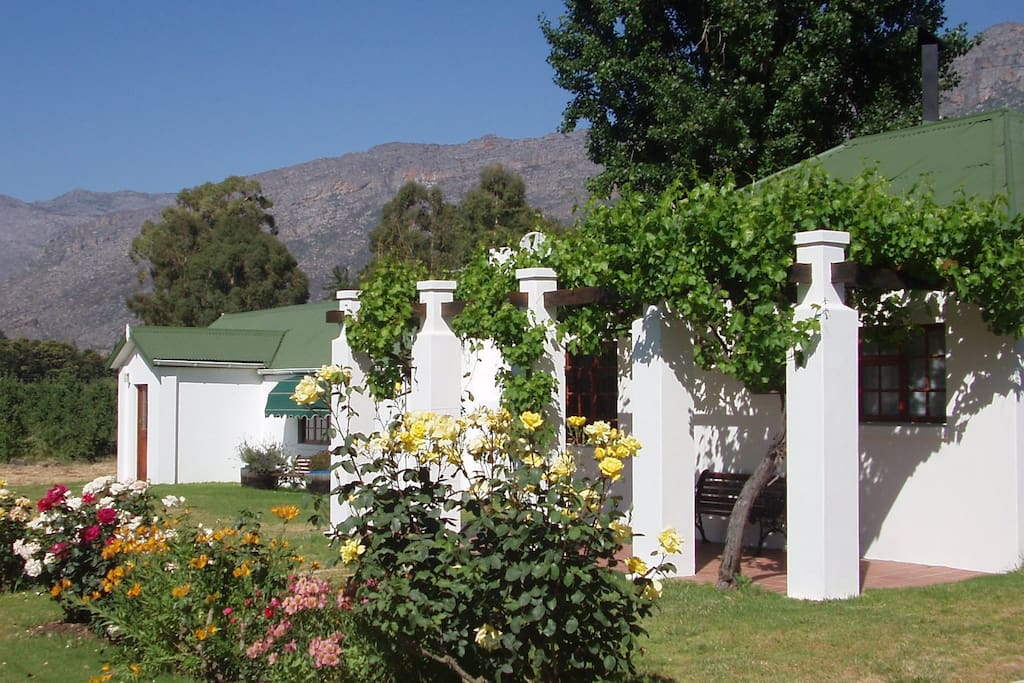 The garden in front of the cottage is beautiful in spring and summer.  The vine-covered verandah on both sides of the cottage offer shade in the hot summer months.