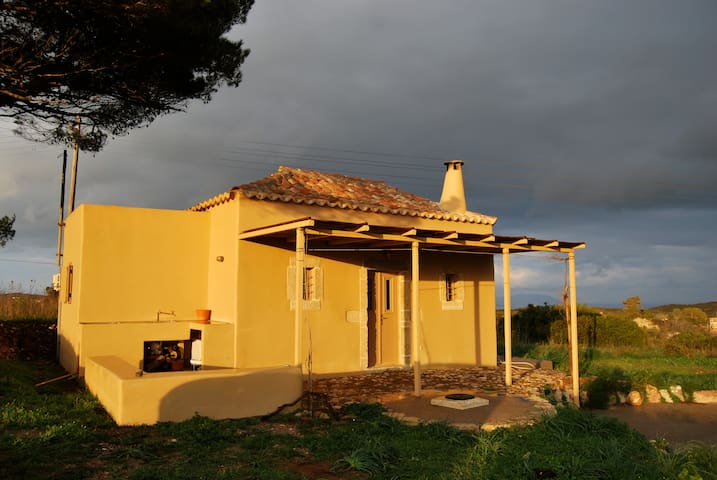 house under the pine tree - Kythira - House