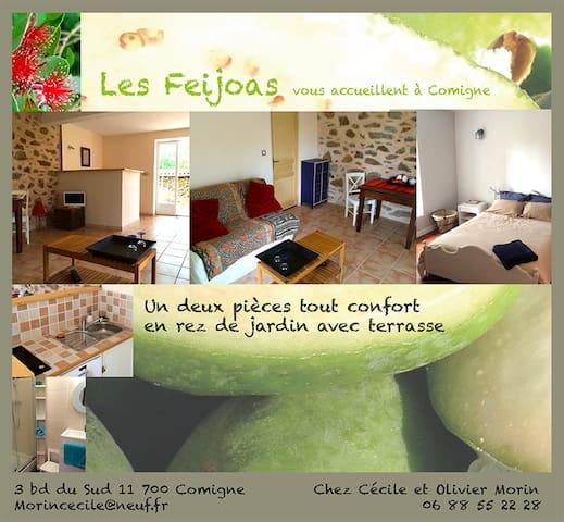 Appartement d'hôte: les Féïjoas - Comigne - Apartment